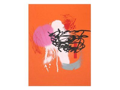 Serigrafía Naranja 2000 - 2020.
