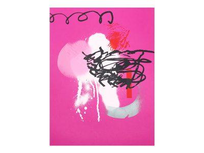 Serigrafía Rosa 2000 - 2020.